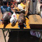 富士の巻狩り イノシシの展示